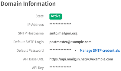 Mailgun domain information section